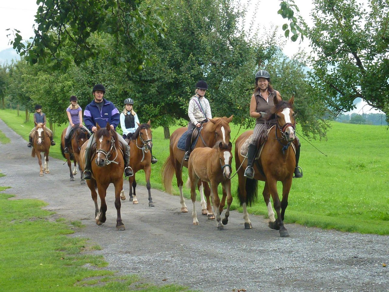 Horse riding at Felder's farm