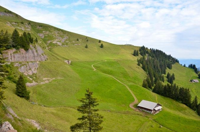 The Rigi Panorama Path, Rigi First - Rigi Scheidegg section