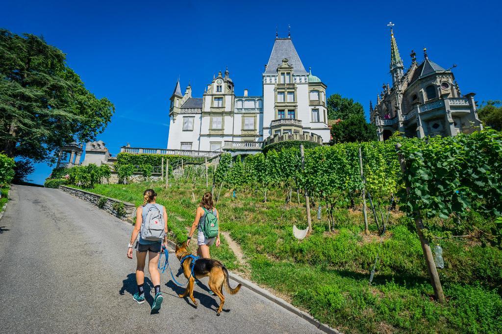 Waldstätterweg Etappe 3: Küssnacht - Luzern