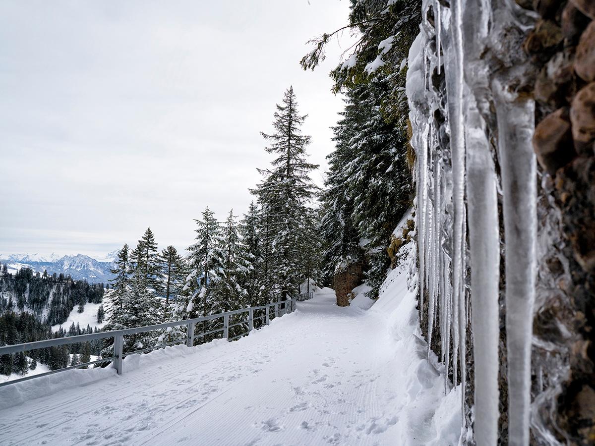 Rigi - Panoramaweg